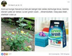 harga sabun green wash hpai